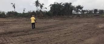 Plots of lands for sale in Westwood Estate,Sangotedo, Lekki