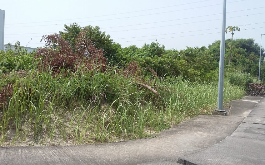 Land for sale in Banana Island, Ikoyi, Lagos SLIB