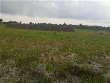 Plots of Land for Sale in Sangotedo !